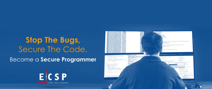 Expert Secure Programmer